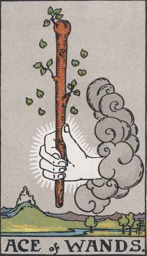 The Ace of Wands Tarot Card's True Meaning: Love