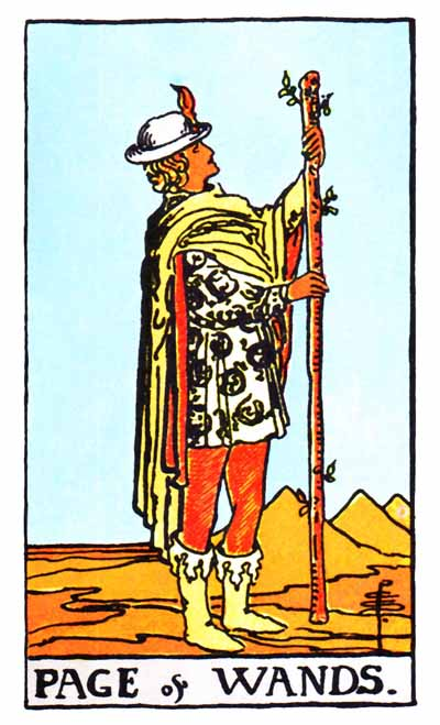 page of wands rider-waite card